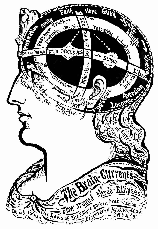 26_ellipsoiid_brain_currents.jpg