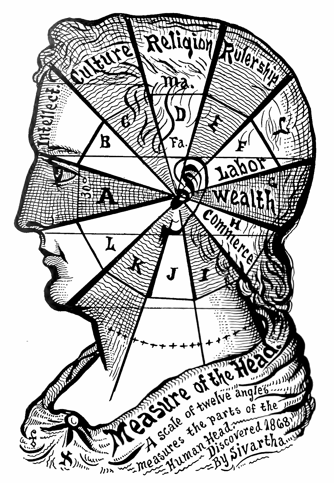 27_Measure_of_the_Head.jpg