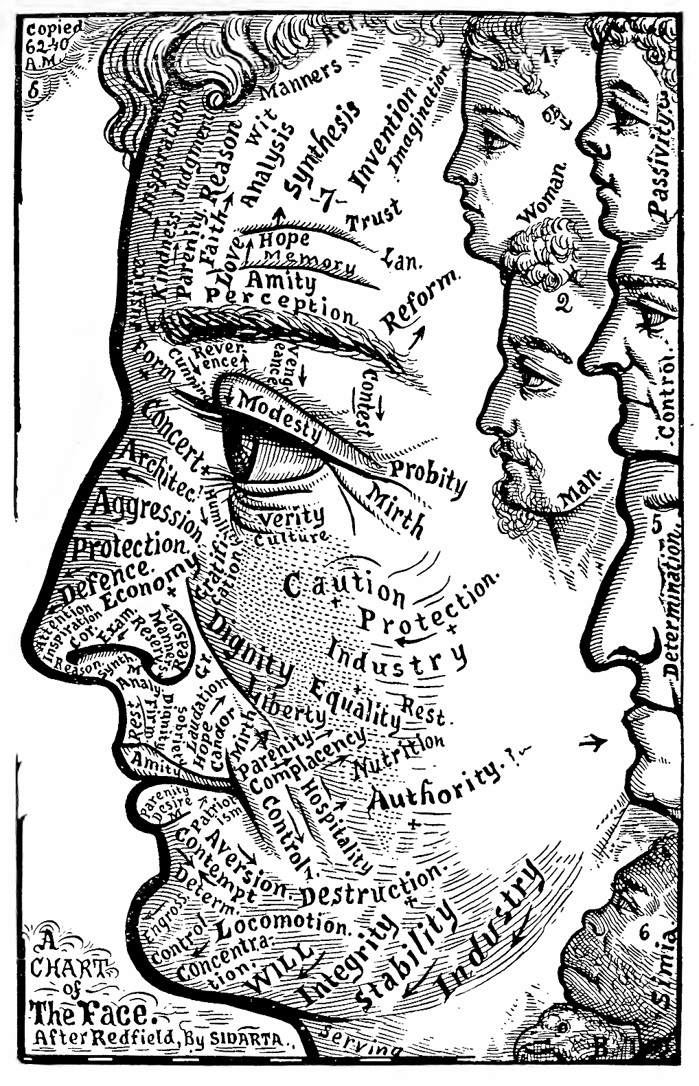 35_chart_of_the_face_1884.jpg