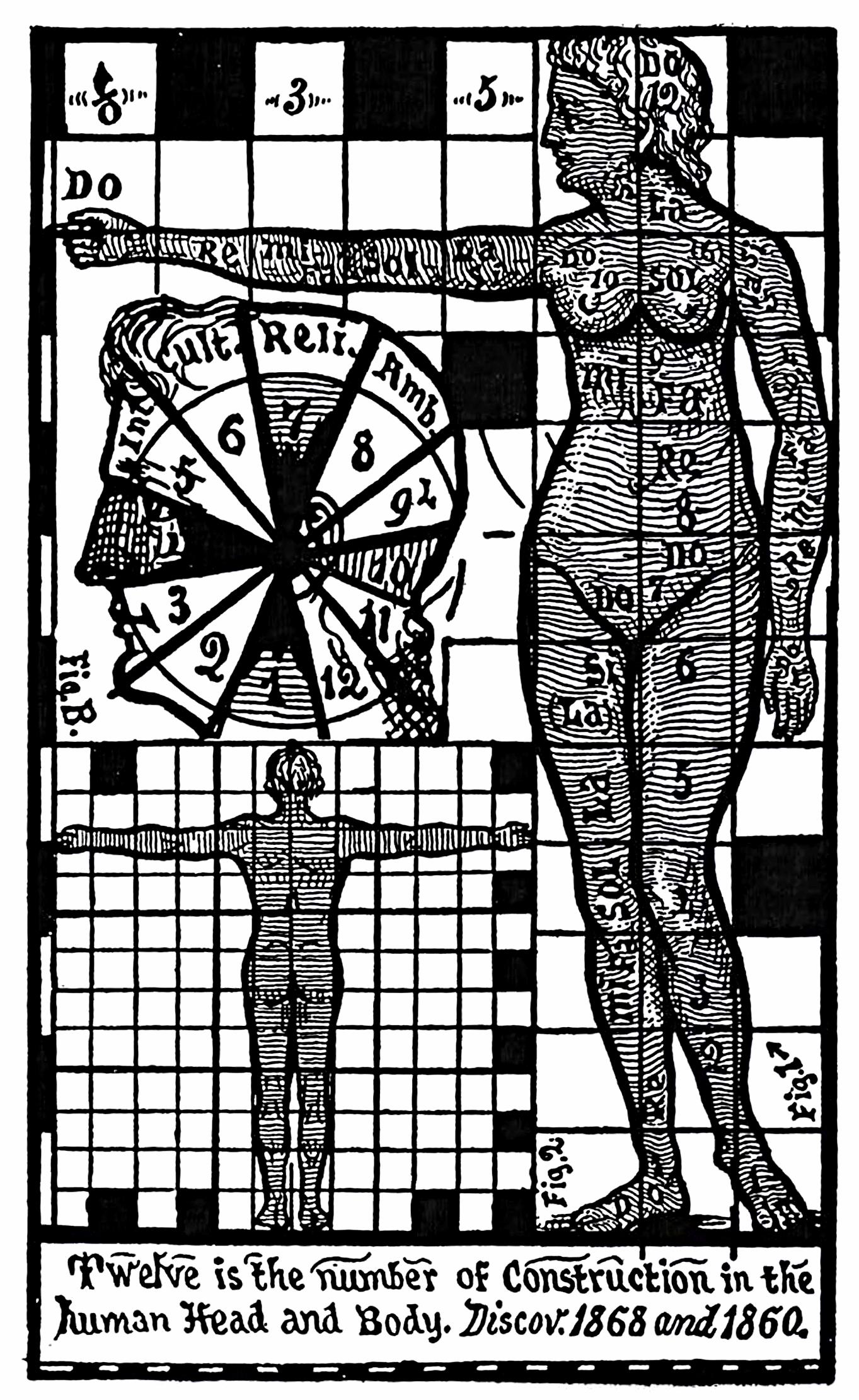 50_twelve_as_measure_of_the_body.jpg
