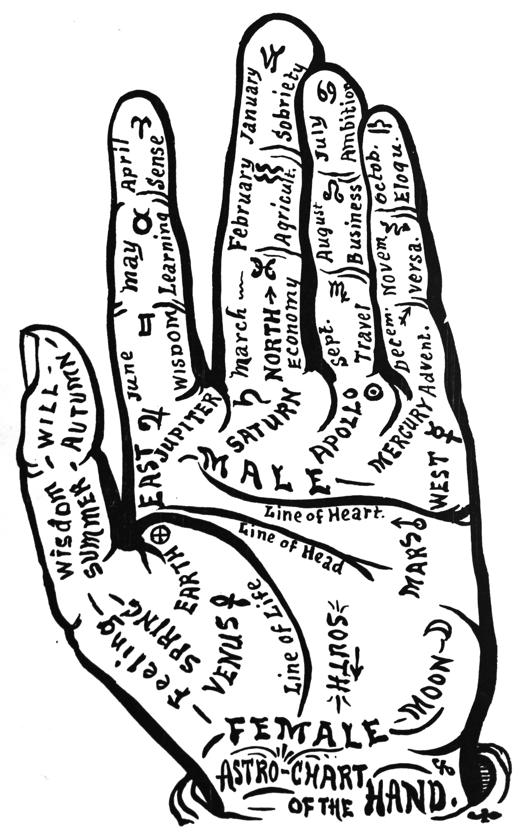 56_astro-chart_of_the_hand_-_palmistry.jpg